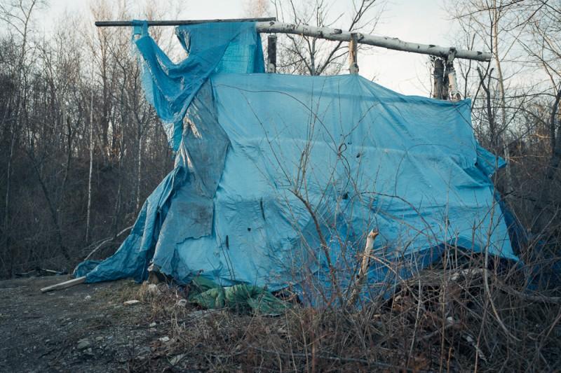 lampton, portland, blue tent #2