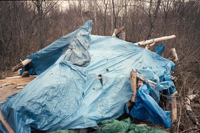 lampton, portland, blue tent #3