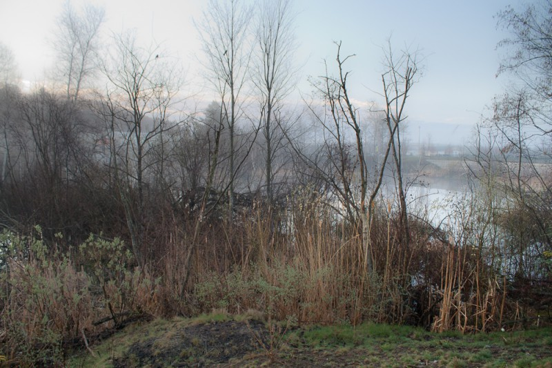 lampton, portland, view of pond